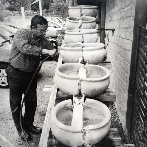 Biodynamic Winemaking Practices